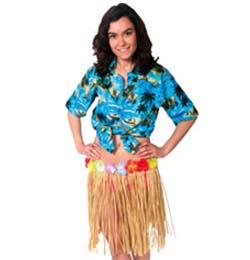 Hawaii Parti
